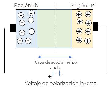Polarización Inversa